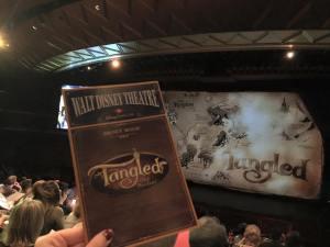 Tangled Musical 1