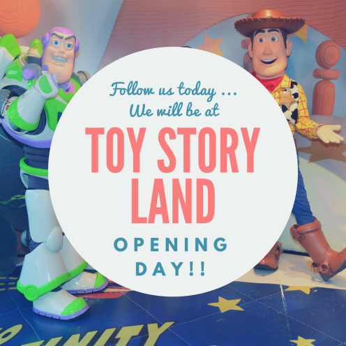Toy Story Land 1